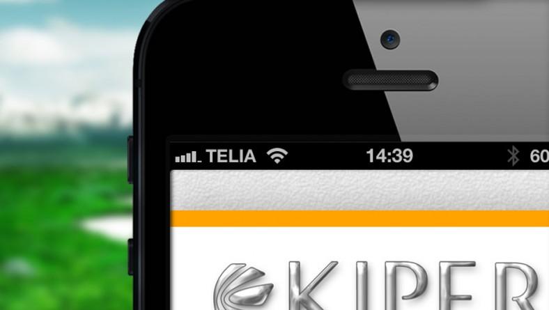 Mobilanpassad webbsida eller responsiv design